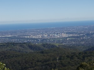 views from the top of Mt Lofty