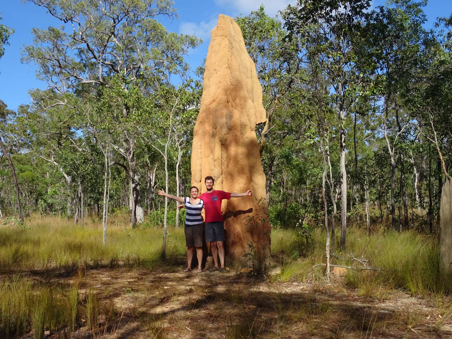 they have some huge termite mounds here