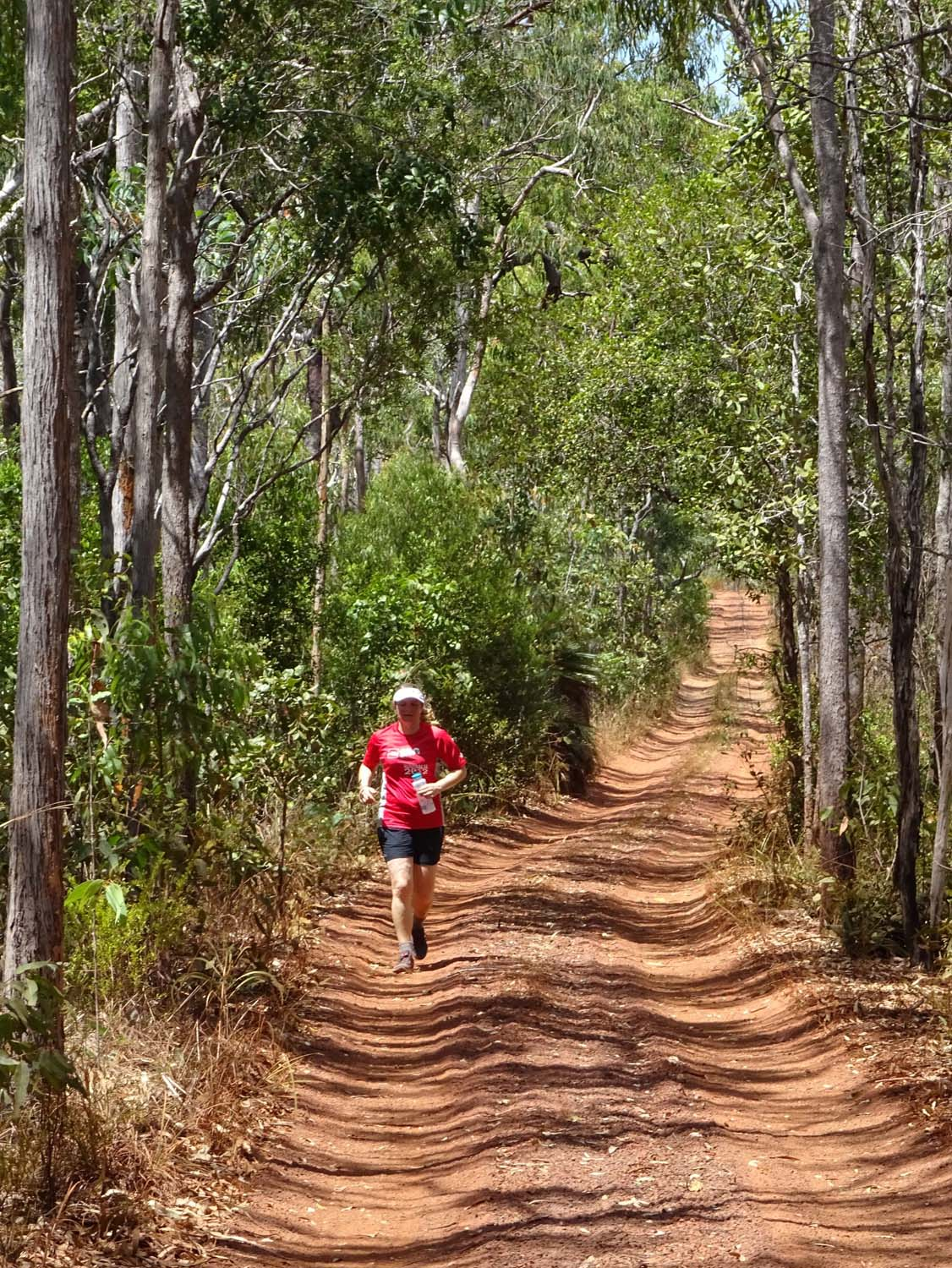 a run on the Old Telegraph Track - this would be an awesome ultra run!