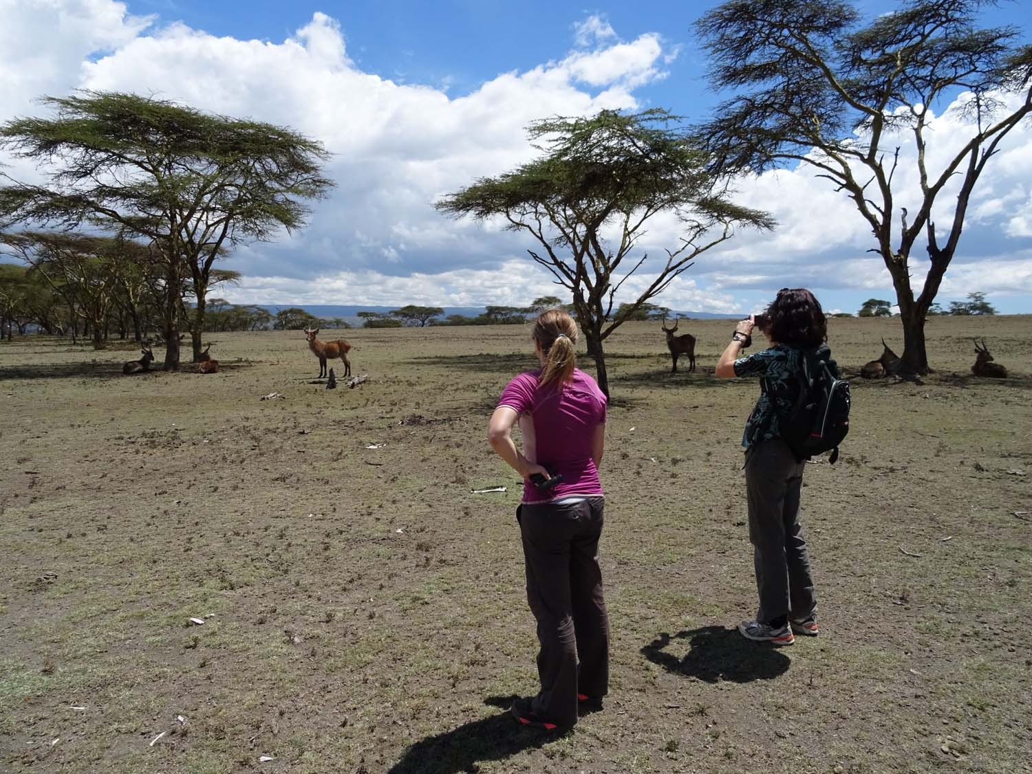 walking safari on Crescent Island with Kat, Jan and Paul - don't worry, no lions here