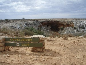 we stop at the Cocklebiddy Caves