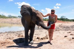 Jude is greeted by this gorgeous elephant