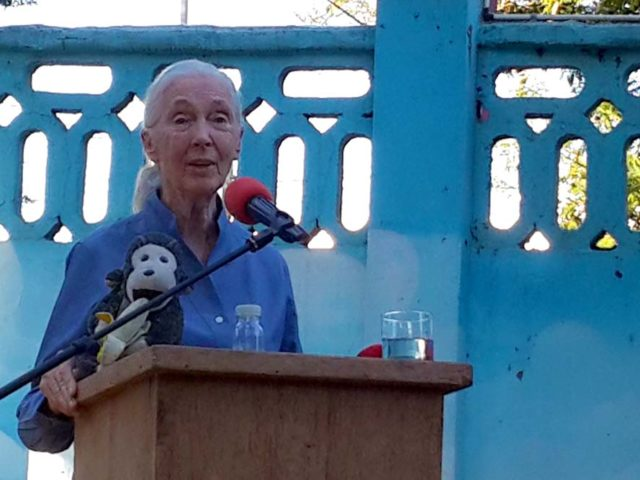 Jane Goodall in Dar es Salaam