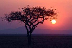 a spectacular sunset in Katavi NP