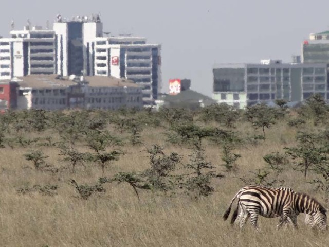 what to do in Nairobi…