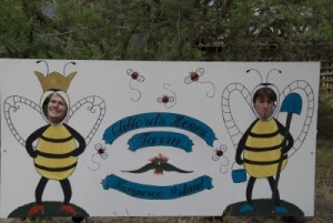 Jon and Stuart at the bee farm