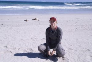 Jude and the sea lions on the beach