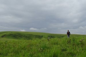 Jon in Kitulo NP, you can walk anywhere you want