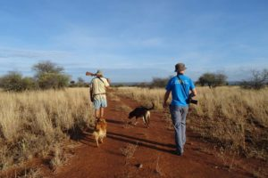 Steve, Jon and the 2 dogs at the start of our walking safari