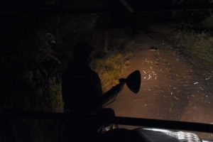 Jude on the spotter's seat with the bright light in Lake Manyara NP