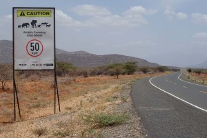 slow down, elephants and other wildlife crossing - a sign you don't see every day!