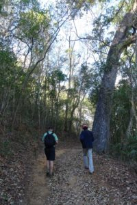 Jon and Rappra (our excellent guide in Ankarafantsika NP) on a walk around the lake