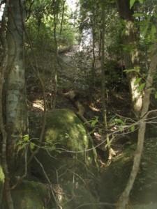 very steep terrain