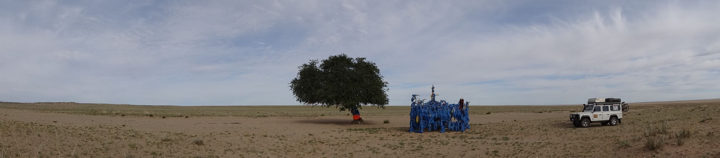 a lone tree in the Gobi Desert with an offering site next to it