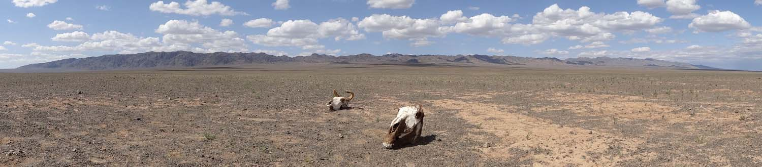 desolate images in the Gobi Desert