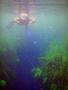 Jude floating in Piccaninnie Ponds