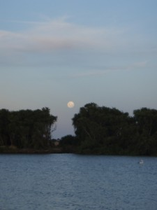 beautiful moonrise above the Murray River