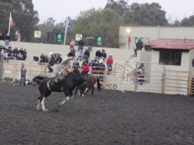 Rodeo Wooroloo