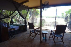our room from the inside, stunning views with only thin mesh separating you from the bush