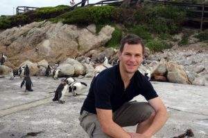 Jon and a whole bunch of African penguins coming back from fishing at sea to roost in the dunes overnight