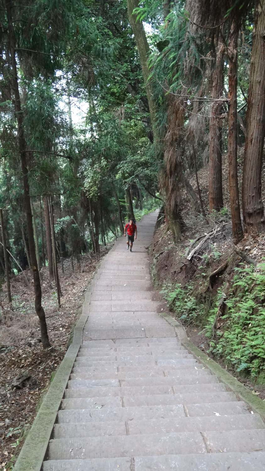 steps, steps and more steps on Mt Emeishan