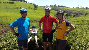 mtb through the tea plantations