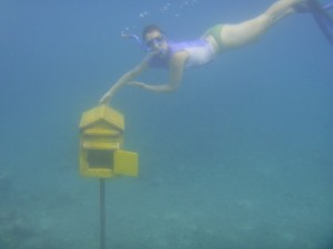 Vanuatu has the world's only underwater post office and mailbox