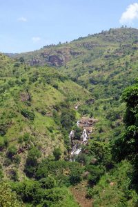 plenty of green and waterfalls in the west Usambara Mountains