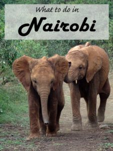What to do in Nairobi - from a local