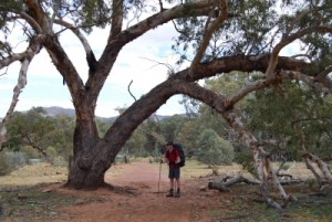 Jon on the way to the rim of Wilpena Pound