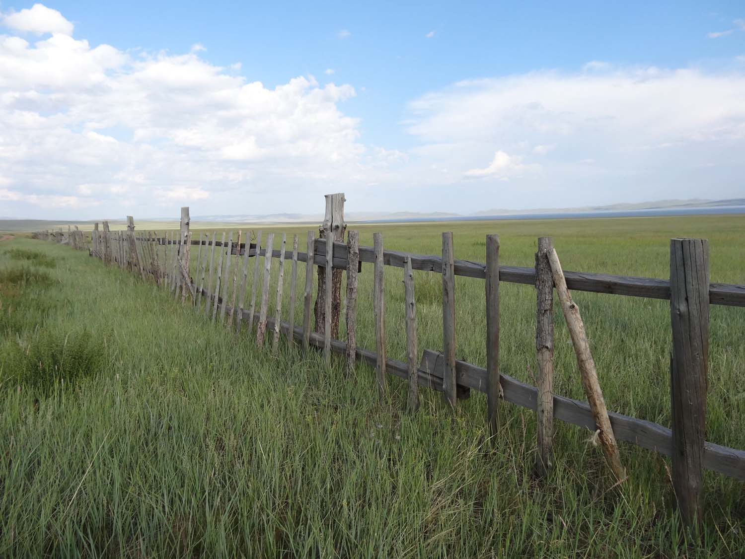 we found the only fence in Mongolia, no idea what it is used for though