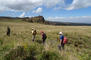 our ranger, Alex, Jude and Marty hiking in the Aberdare NP