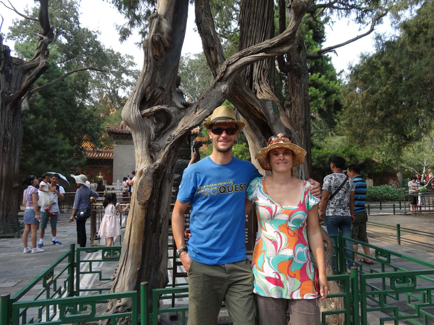 entwined trees, symbol of everlasting love in the Forbidden City