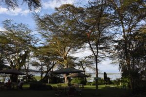 view over Lake Naivasha from Elsamere, stunning location for a house