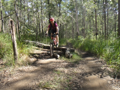 Daisy Hill mtb ride