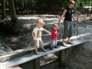 getting across a narrow bridge in the forest