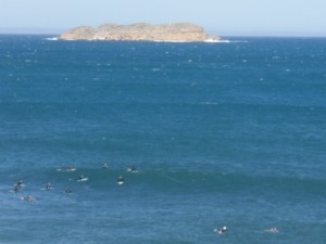 plenty of surfers out in the water