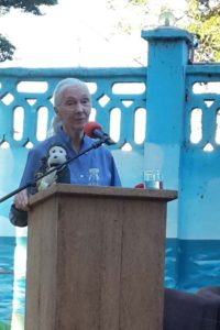 Dr Jane Goodall speaking in Dar es Salaam