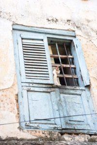 one of Jon's windows