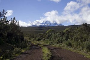 views of Kilimanjaro