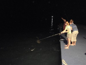 catching bait fish at night off the jetty