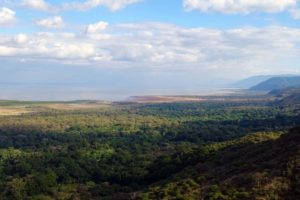view of Lake Manyara NP from the road up the escarpment