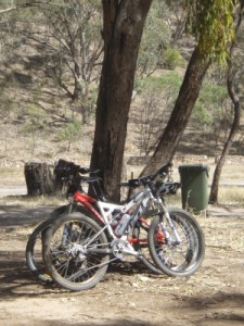 our trusty bikes