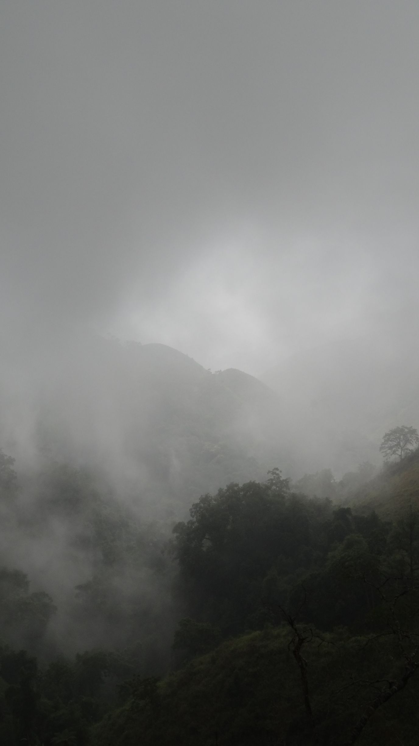 beautiful fog in the mountains, a bit difficult for the driving though