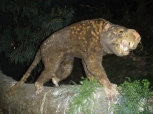 more models of animals that used to roam in Australia