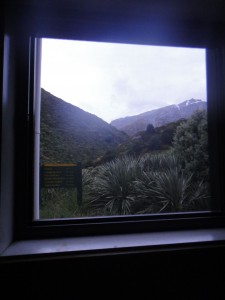 view from my bed in Dart Hut