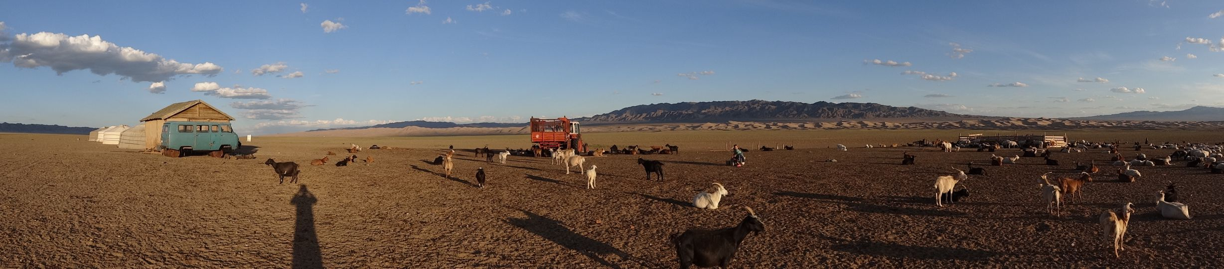 staying with a local family in the Gobi Desert, this is their herd of goats and their shed