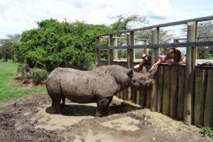 Jude, Helen and a very happy Barak, the blind black rhino
