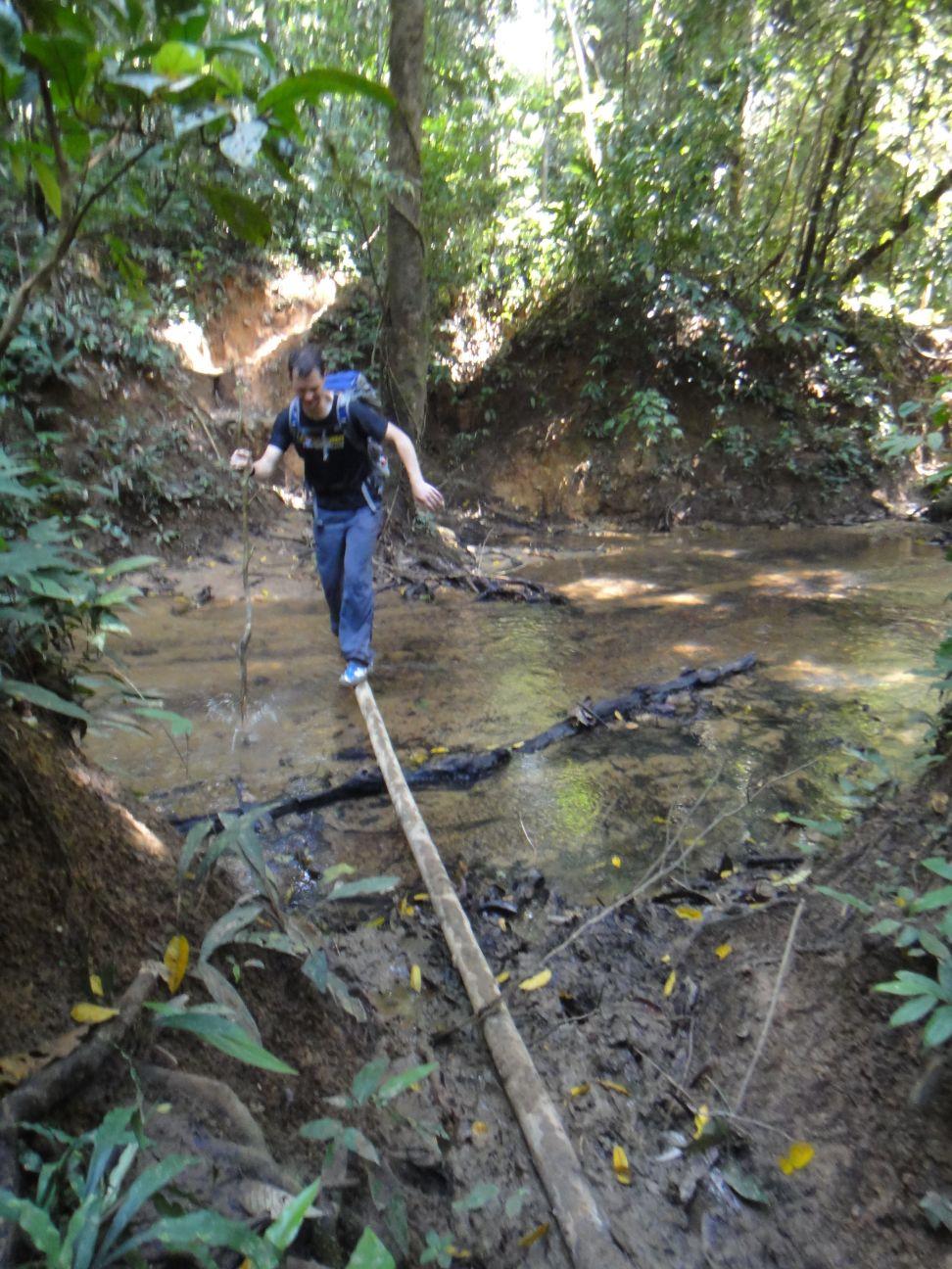 bit muddy in places