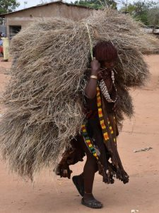 a Hamer lady carrying animal fodder, note her goat skin skirt decorated with beads and metal